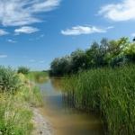 Wurzinger Teich